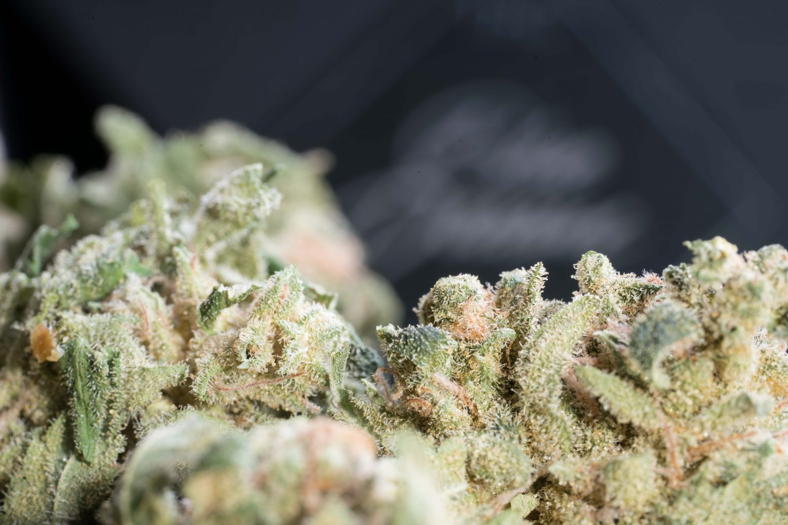 Blue Dream by Tantalus Labs